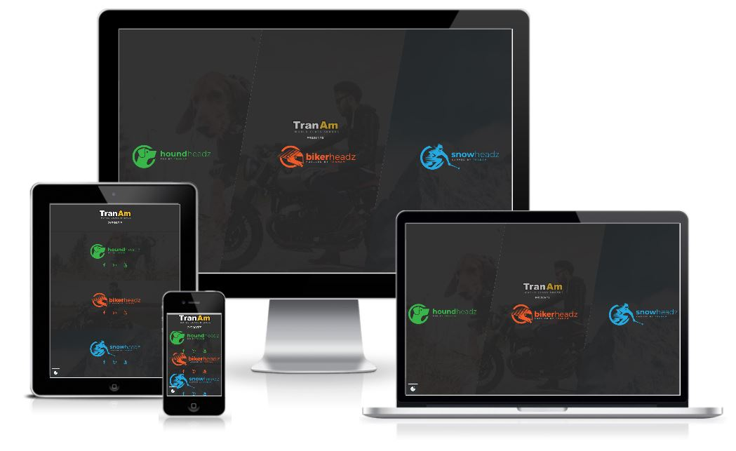 TranAm Group Website